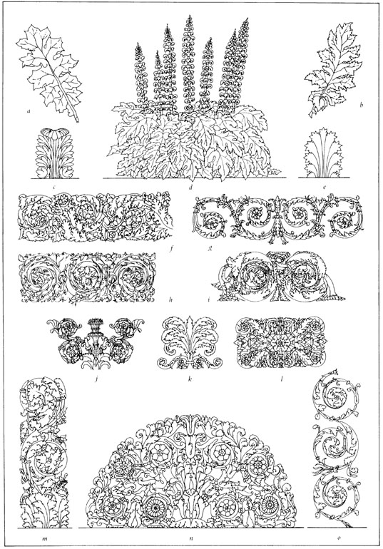 Acanthus for Art et decoration pdf