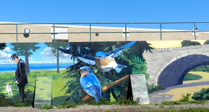 Adult ed for Bufflon revetement mural